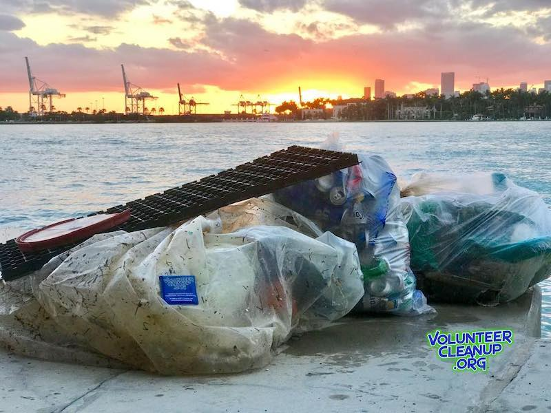 Miami Date Ideas: Beach Cleanup